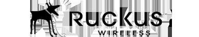 ruckus-gray
